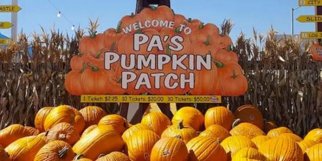 pas-pumpkin-patch-700x350.jpg