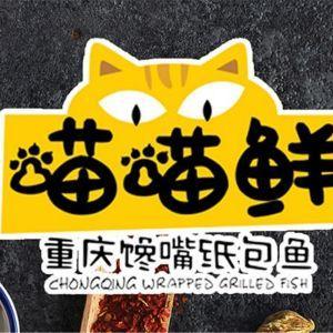 喵喵鲜重庆馋嘴纸包鱼