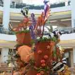 周末橙县有30周年花展,爱花的你不要错过,还可遛娃